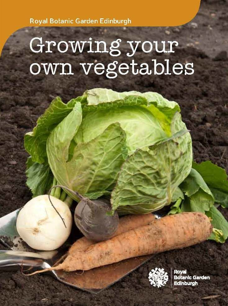 The Botanics Growing Your Own Vegetables Book Botanics