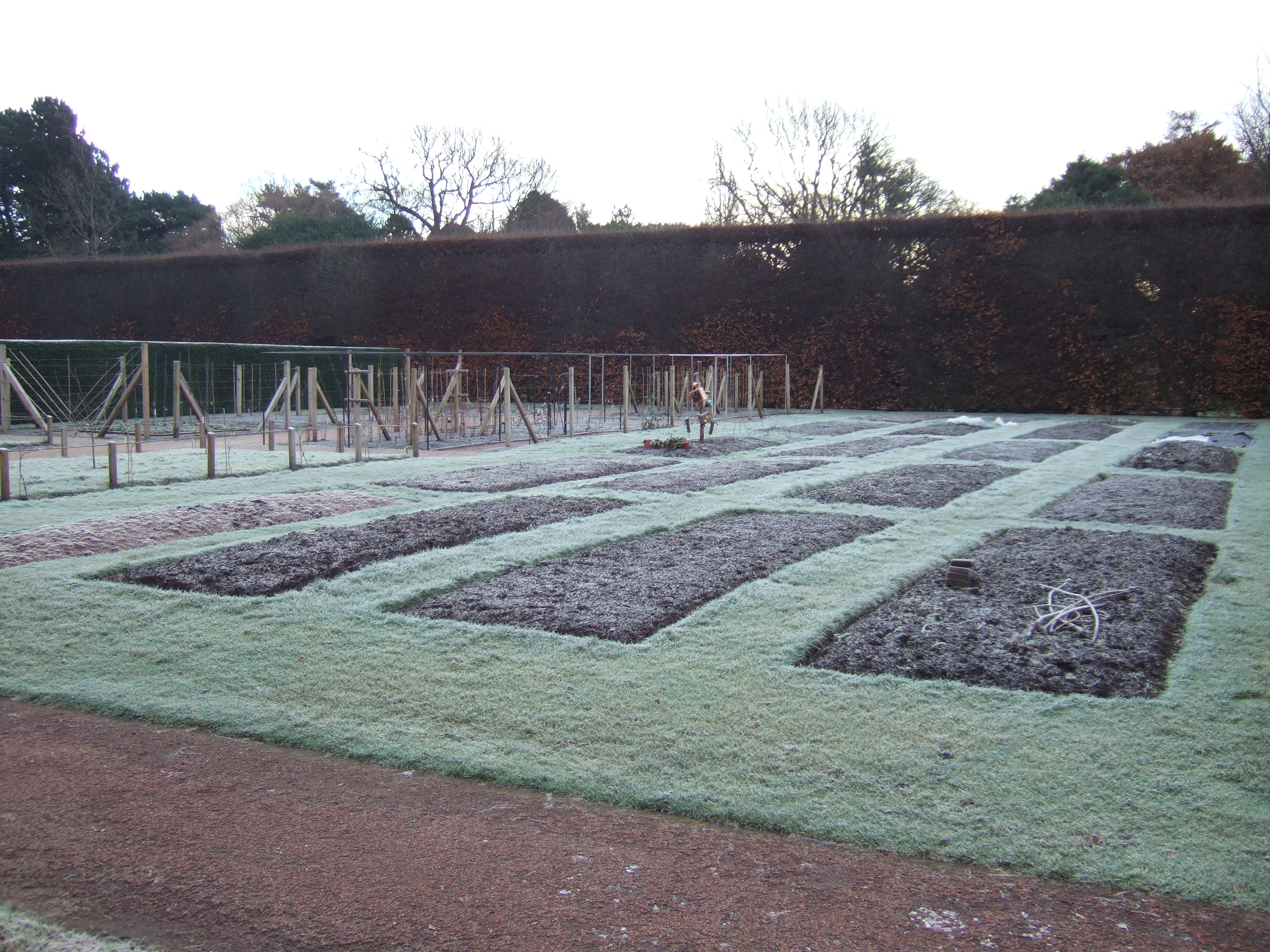 The plots in January 2013
