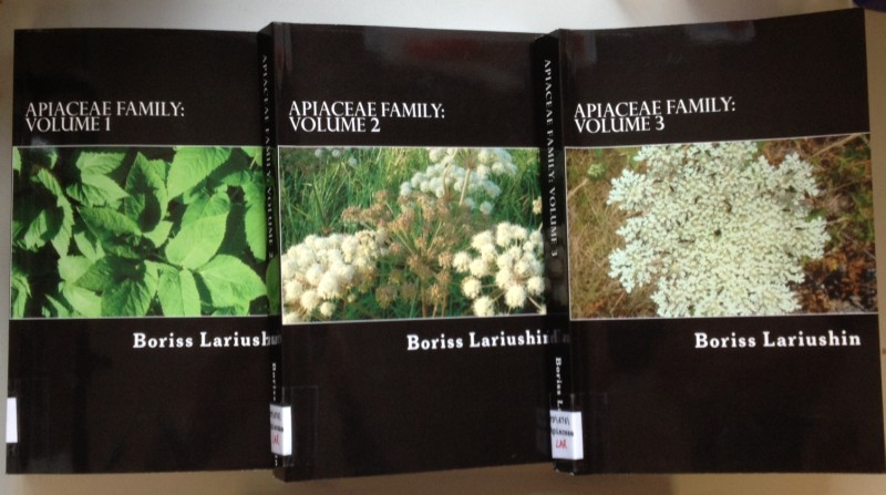 Apiaceae Family