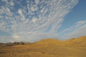 desert (Medium)