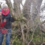 Ali Murfitt and lichenologist Sally Eaton inspect the lichen flora of ash trees