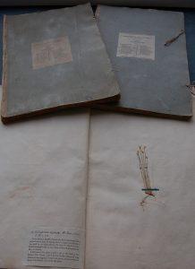 George Don's Herbarium Britannicum