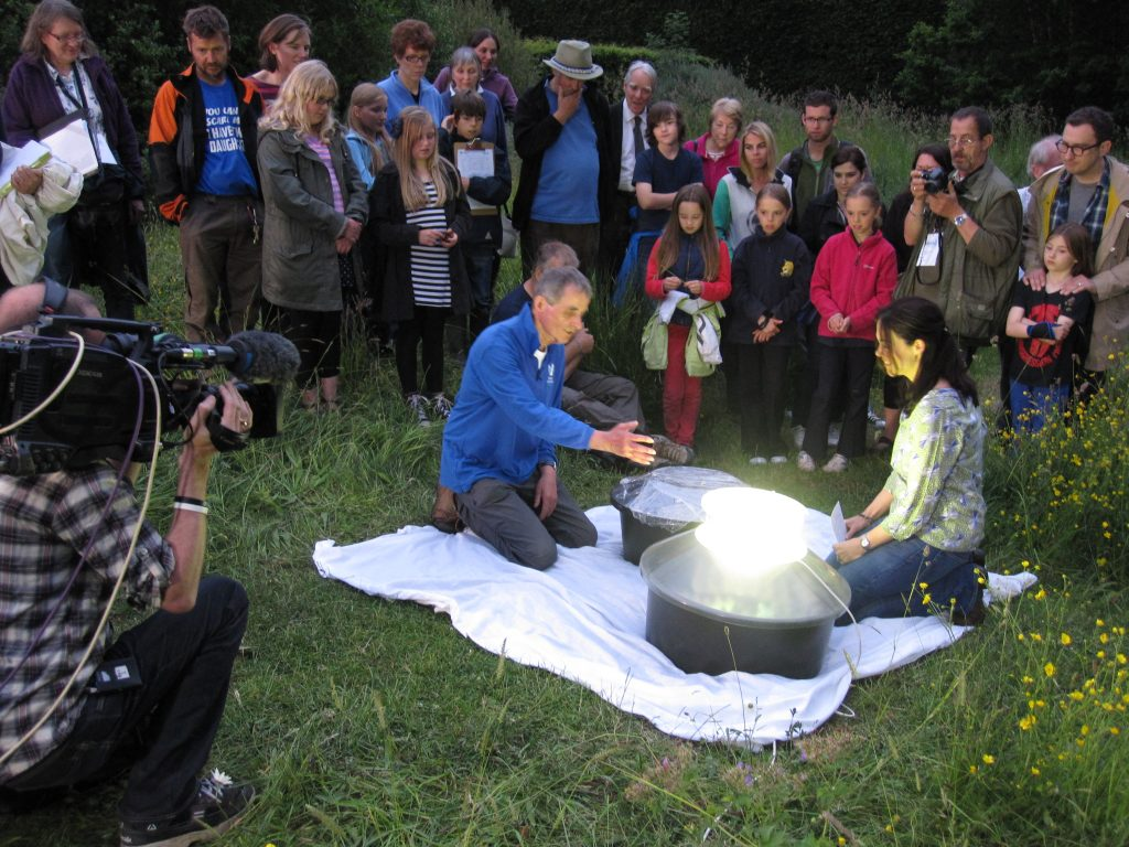 Opening of the moth trap live on TV as part of the BBC Midsummer Live programme