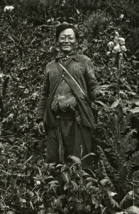 """Rhoomoo Lepcha holding a yellow flowered Meconopsis paniculata photographed in the Sikkim forests below Changu Lake"" June 1913. Photograph and text R.E. Cooper. RBGE Library Archive"