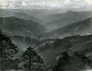 Photograph R.E. Cooper taken c. 1913-1916.