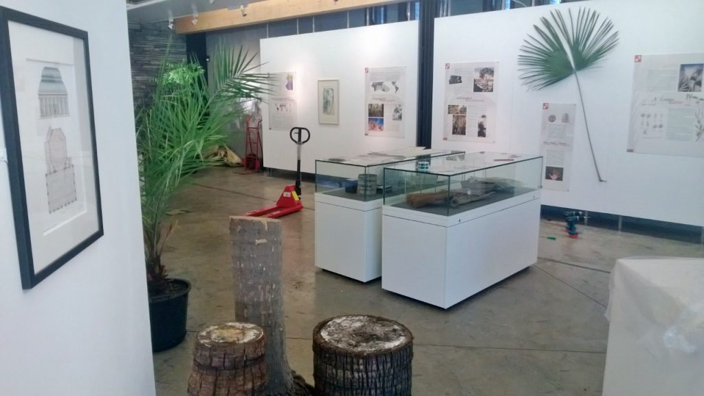 Work in Progress - installing The World of Palms