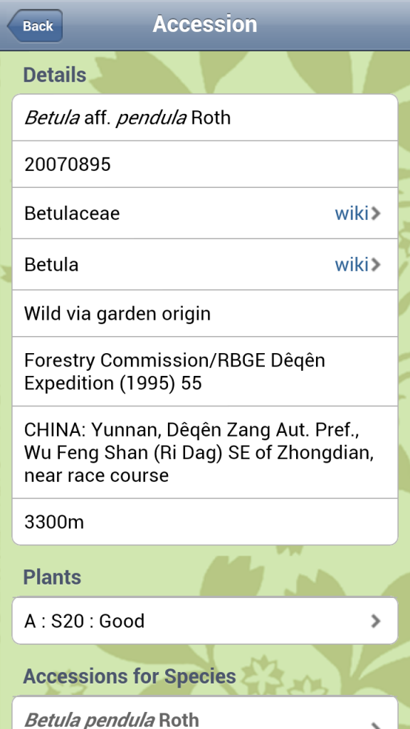 Entering the accession number in the app displays details about its origins and what other plants there are in this accession. In this case there is only one plant.
