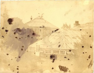 Image of the Octagonal Palm House taken in 1854. Note the Palm fronds breaking through the roof. Photographer: Dr. Duncan. Image: Archives of the Royal Botanic Garden Edinburgh