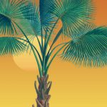 The World of Palms