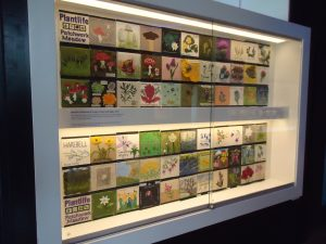 Installation shot of Patchwork Meadow exhibition, Gateway Gallery, Royal Botanic Garden Edinburgh