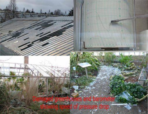 Greehouse damage