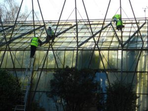Repairs to front range glasshouses. Photo by Tony Garn
