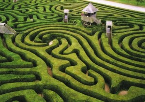 The hedge maze on the Longleat estate in Wiltshire