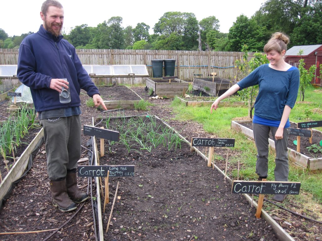 Dee and Michael with the newly sown trial plots at Hermitage Vegetable Garden, Edinburgh.