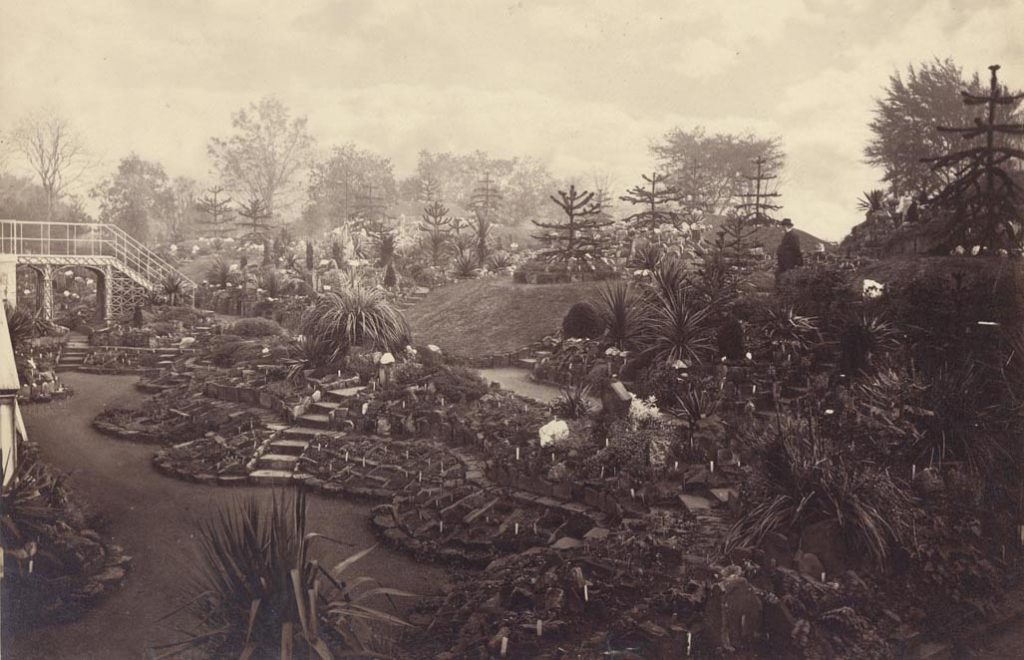 The RBGE Rock Garden c1874 with the figure in question top right.
