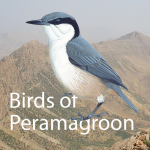 Birds of Peramagroon: Support Page