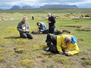 Nordic bryologists at Achnahaird Bay, Wester Ross