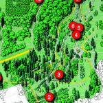 First Audio Leaflet: Dawyck Scottish Trees Trail