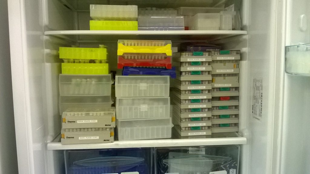 A fridge-full of DNA at RBGE