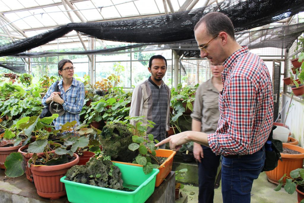the team looks around the Begonia collection with Wisnu Ardi