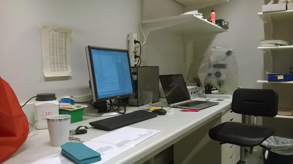 Building phylogenetic trees in the University Herbarium, Trondheim