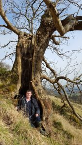 This ancient ash provided an invaluable habitat for the author to take lunch in