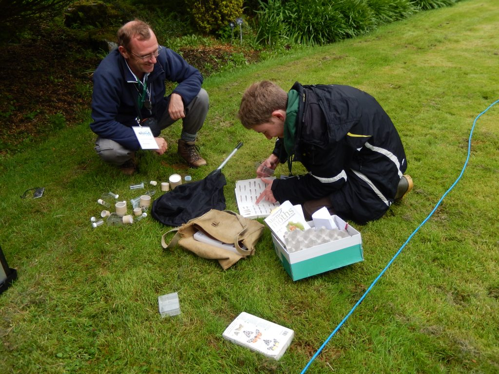 Tom and Andrew identifying moths.