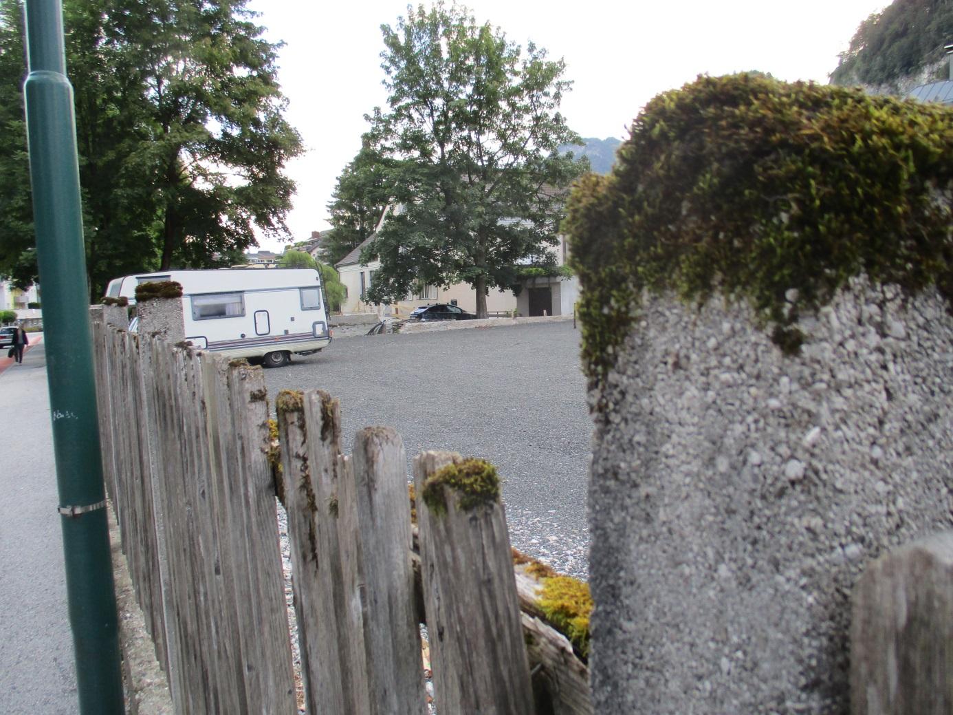 Demolition Concrete Poles : Schistidium caps an old wooden fence botanics stories
