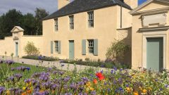 Busy at the Botanic Cottage