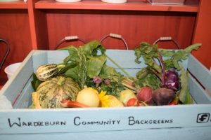 Wardieburn Community Backgreens