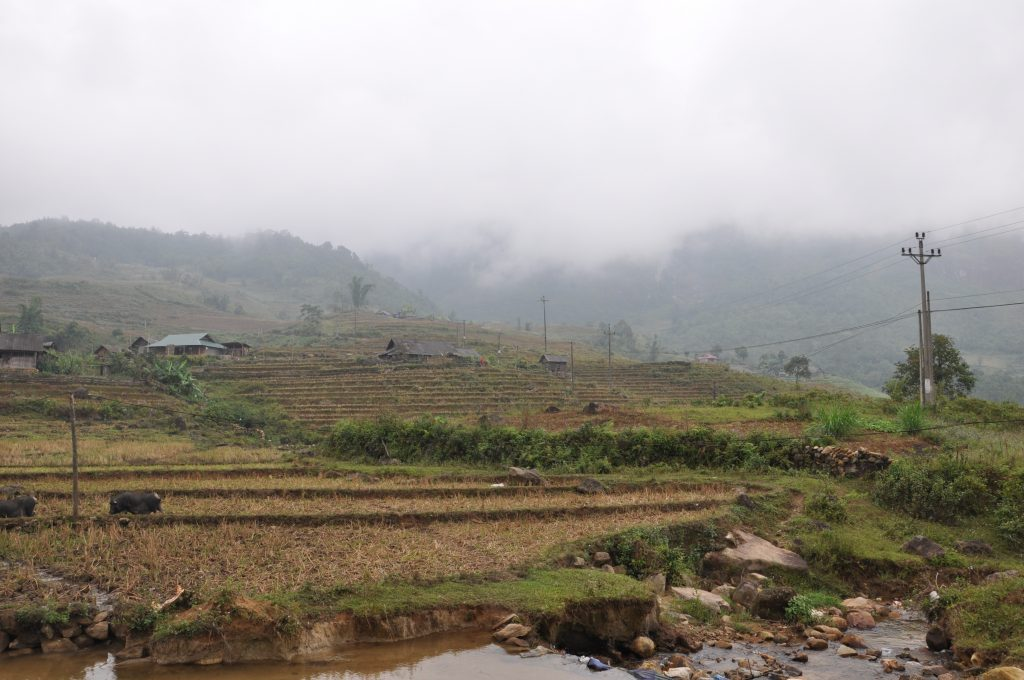 Village and paddy fields at the entrance to Nhiu Co San