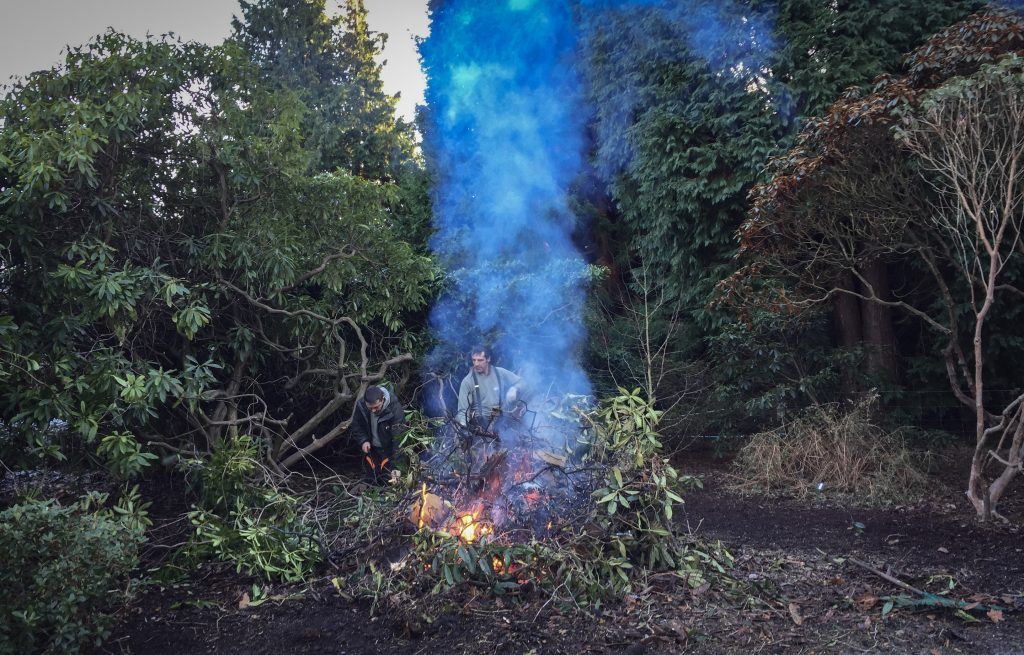 Burning plant material in situ to prevent spreading the disease