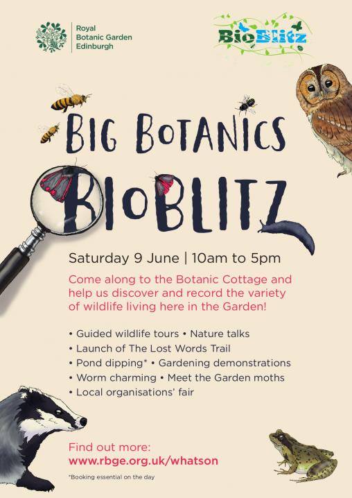 Garden Wildlife Botanics Stories