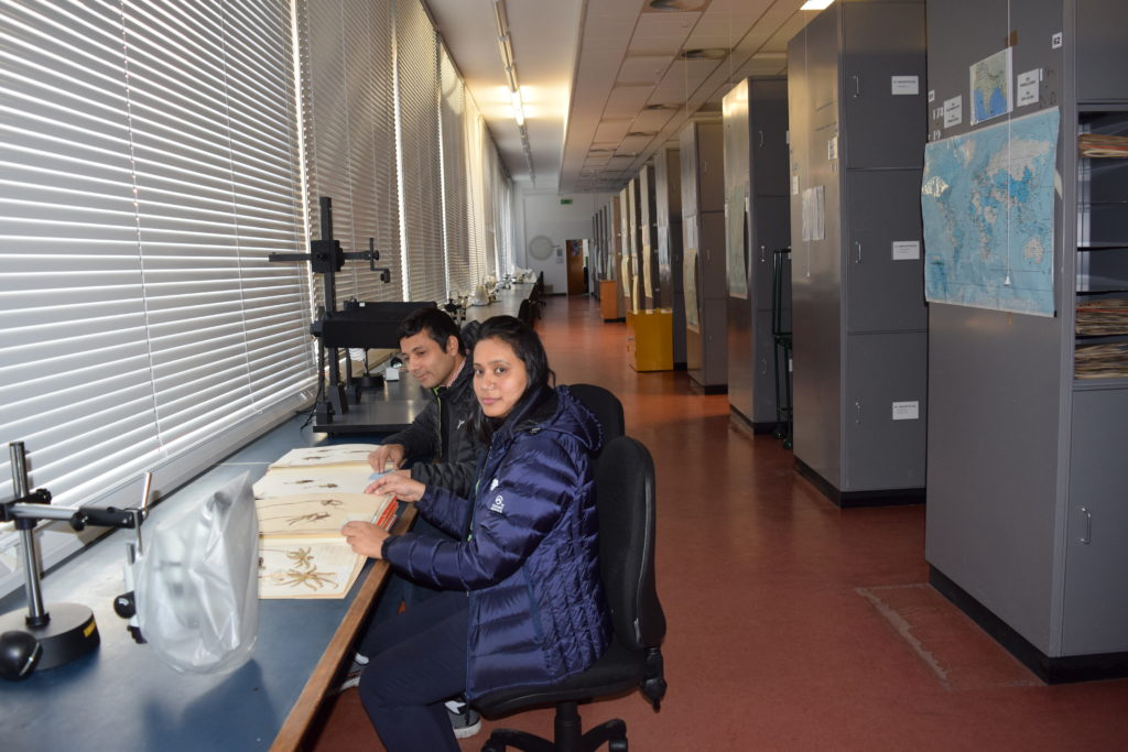 Nepalese researchers, Dhan Raj Kandel and Rita Chhetri  working with herbarium specimens for the Flora of Nepal.