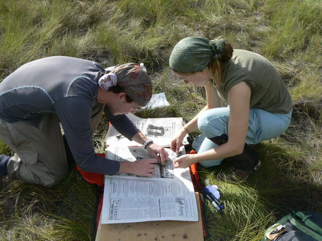 Two students, a man and a woman, crouch over a press in long grass, the man is arranging a small plant on the open newspaper.