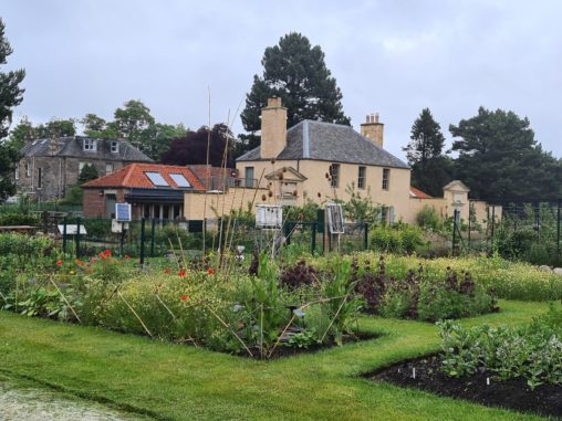 Vegetable beds int he foreground, with the cream coloured Botanic Cottage building in the background