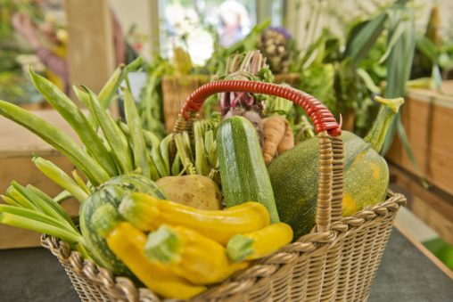 Image shows a basket of produce: courgettes, cucumber, beans, marrow