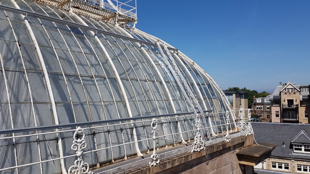 External view of palmhouse roof ladders