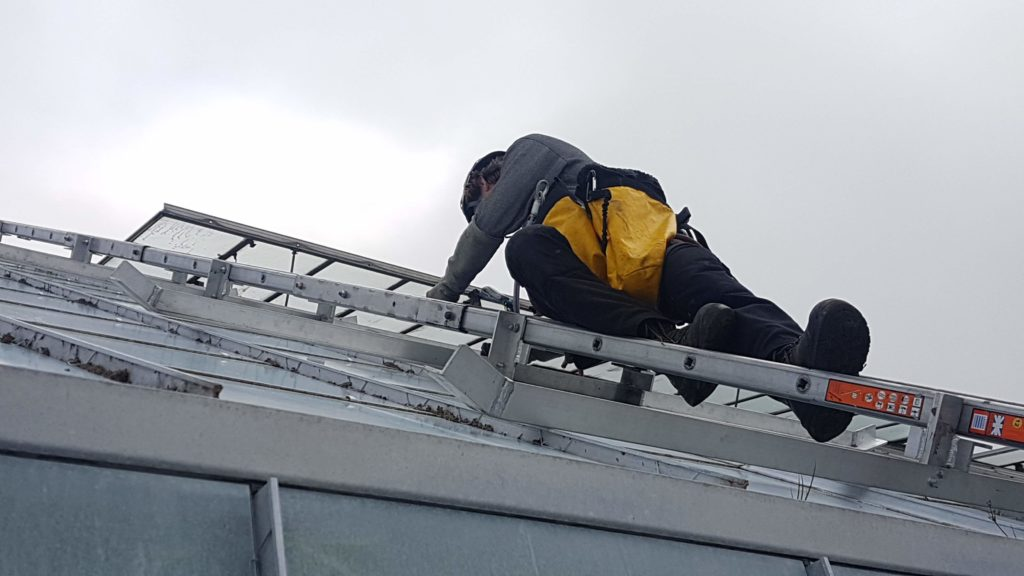 operative undertaking roof glazing repairs on ladder