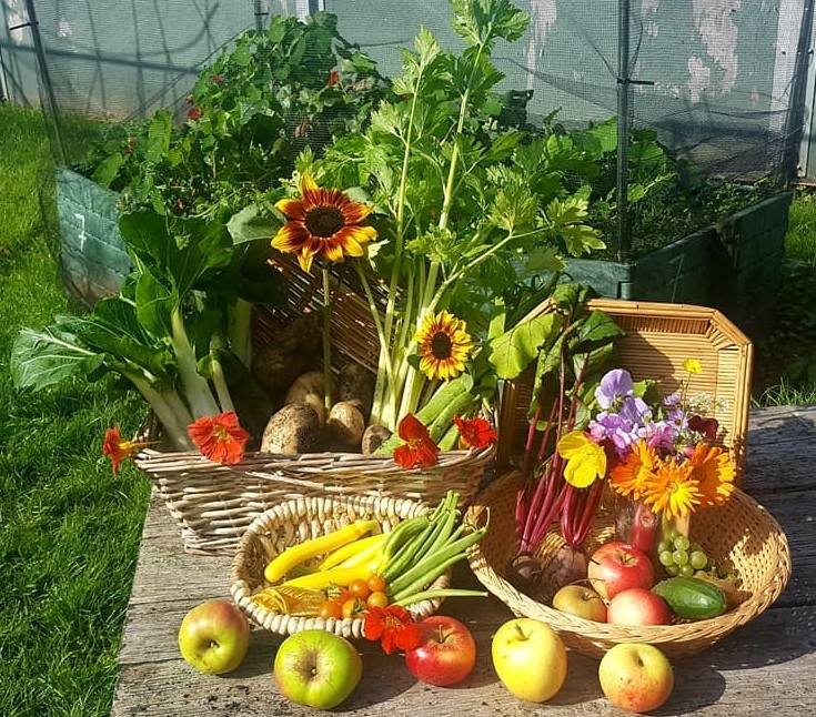 A colourful display of baskets of vegetables and fruit; leeks, beans, potatoes, courgettes, betroot, tomatoes, apples, grapes and a display of edible flowers.