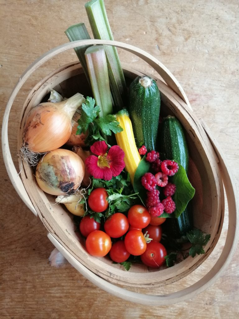 A basket of produce on the dining room table: onions, tomoatoes, courgettes, herbs, rhubarb, raspberries.