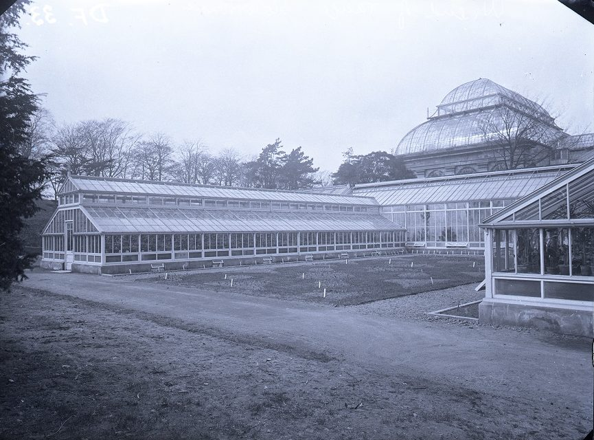 Black and white photograph showing the glasshouses at RBGE in the 1890s.