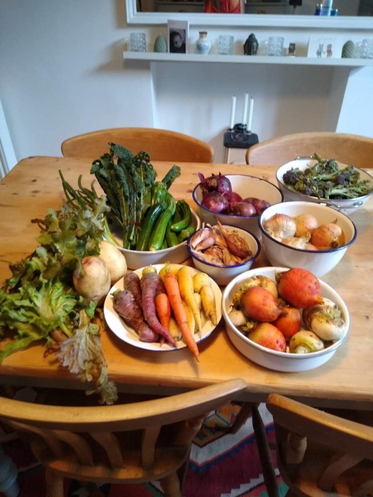 Image shows a dining tables full of homegrown vegetables: potatoes, salad leave, cavelo nero, courgettes, carrots of all colours, golden betroot, turnips, different types of onions and tender stem brocolli