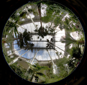 """""""Fish-eye"""" photograph of the RBGE Palm House"""