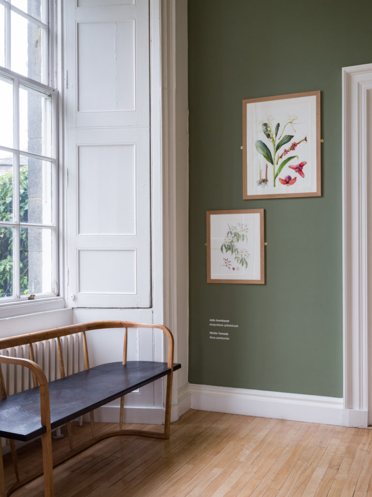 An installation view of the exhibition Florilegium: A gathering of flowers, in which Resilience Bench was positioned in the gallery space for the first time.