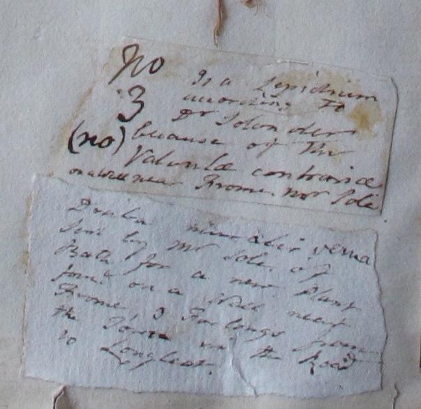 Labels on the Lightfoot specimen
