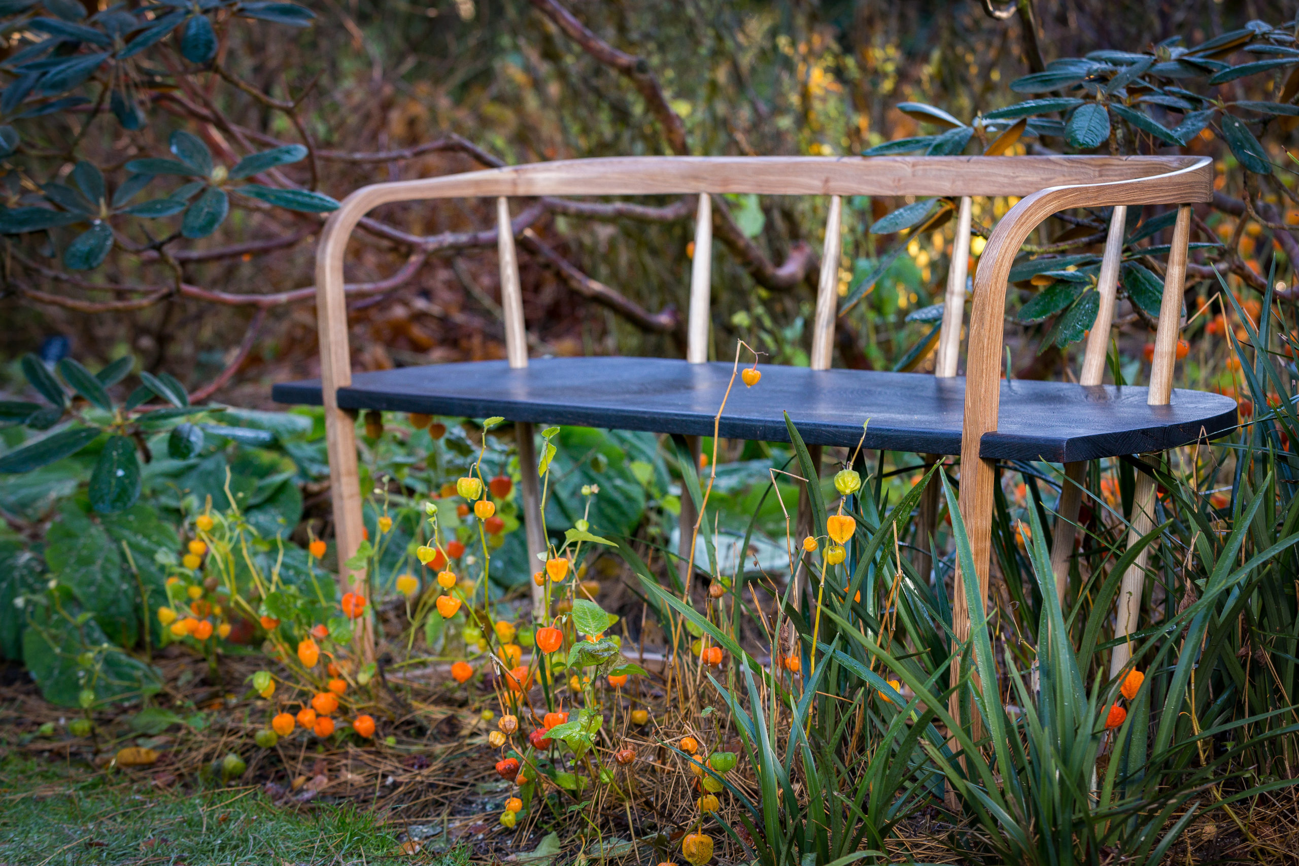 Angus Ross' Resilience Bench sits outside in the Royal Botanic Garden Edinburgh, amongst brightly coloured Physalis and in front of a large, leafy Rhododendron tree.